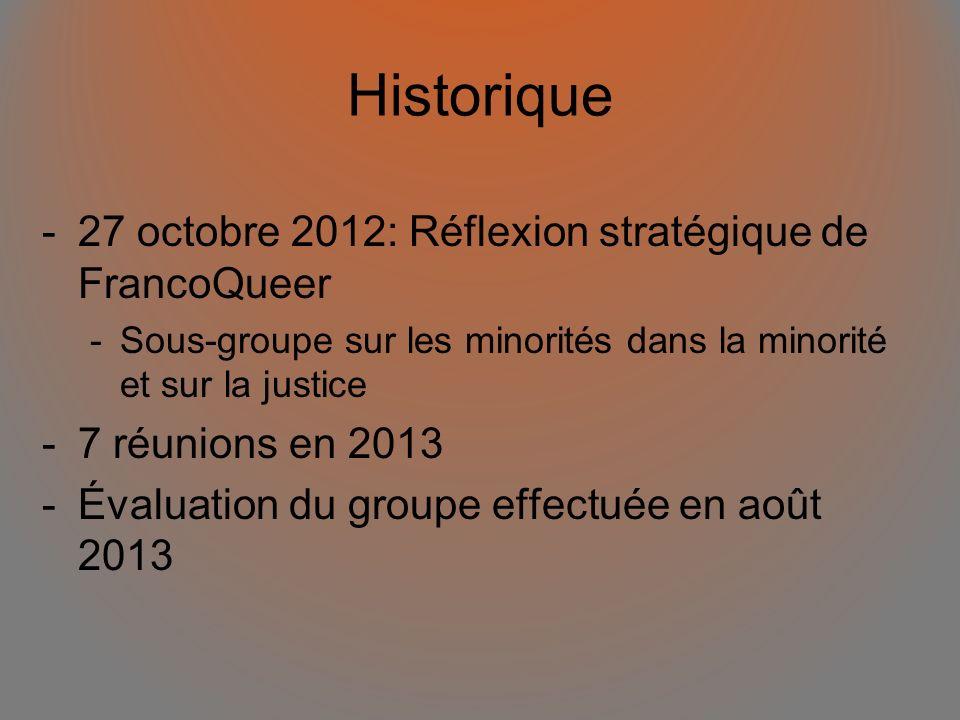 Historique -27 octobre 2012: Réflexion stratégique de FrancoQueer -Sous-groupe sur les minorités dans la minorité et sur la justice -7 réunions en 201