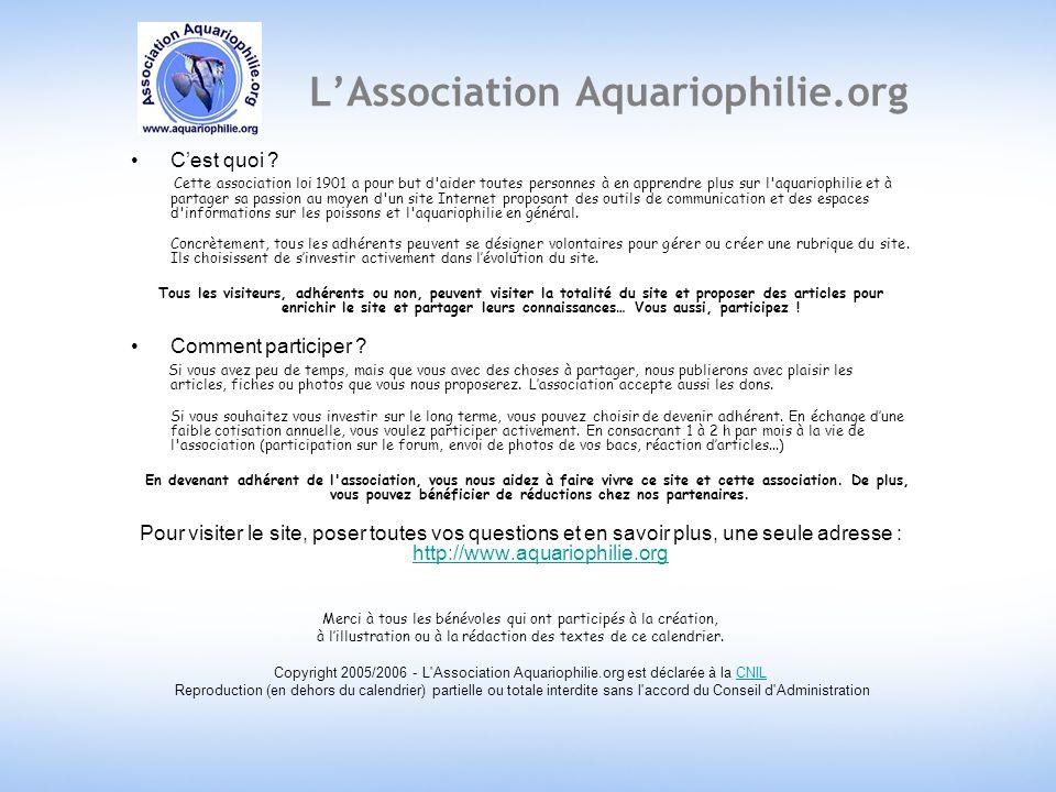 LAssociation Aquariophilie.org Cest quoi .