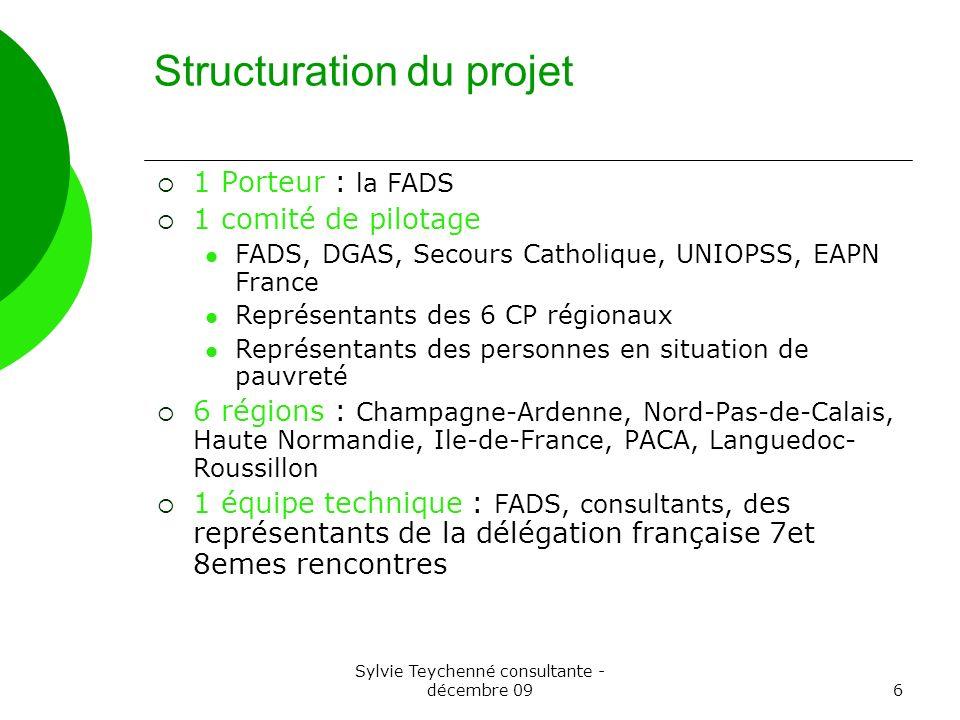 Sylvie Teychenné consultante - décembre 096 Structuration du projet 1 Porteur : la FADS 1 comité de pilotage FADS, DGAS, Secours Catholique, UNIOPSS,