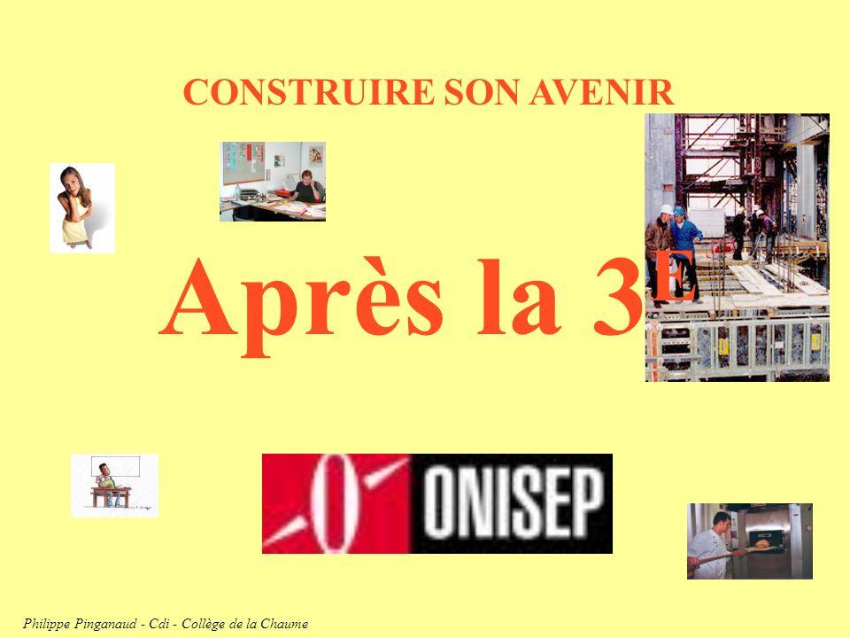 CONSTRUIRE SON AVENIR Après la 3 E Philippe Pinganaud - Cdi - Collège de la Chaume
