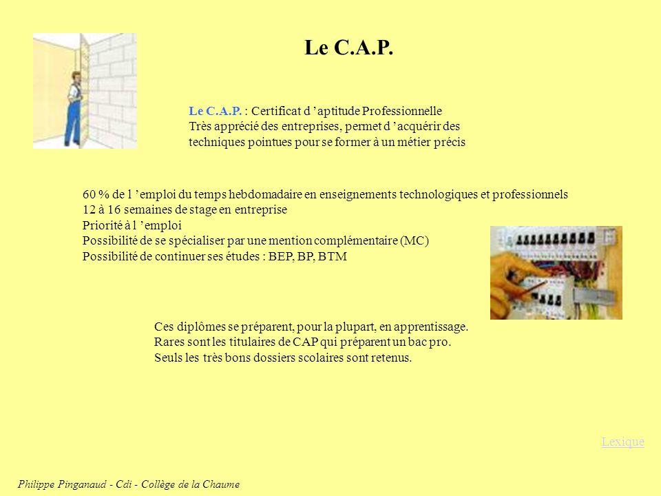 Le C.A.P. Le C.A.P. : Certificat d aptitude Professionnelle Très apprécié des entreprises, permet d acquérir des techniques pointues pour se former à