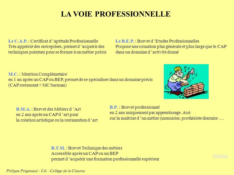 LA VOIE PROFESSIONNELLE Schéma Le C.A.P. : Certificat d aptitude Professionnelle Très apprécié des entreprises, permet d acquérir des techniques point
