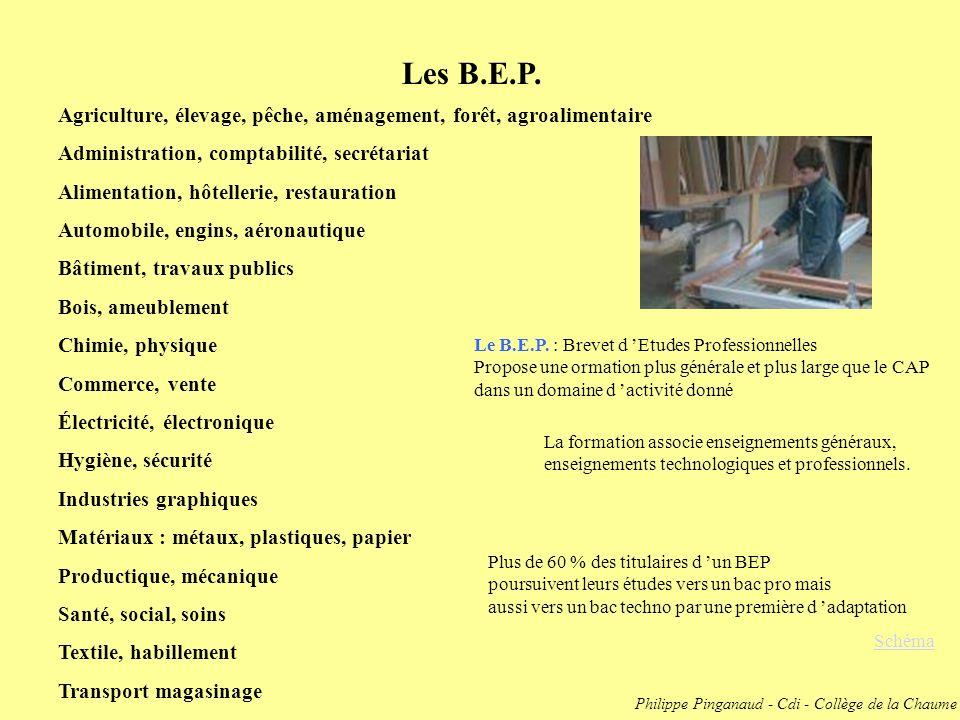 Les B.E.P. Schéma Agriculture, élevage, pêche, aménagement, forêt, agroalimentaire Administration, comptabilité, secrétariat Alimentation, hôtellerie,