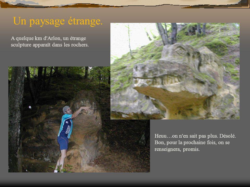 Un paysage étrange. A quelque km d'Arlon, un étrange sculpture apparaît dans les rochers. Heuu…on n'en sait pas plus. Désolé. Bon, pour la prochaine f