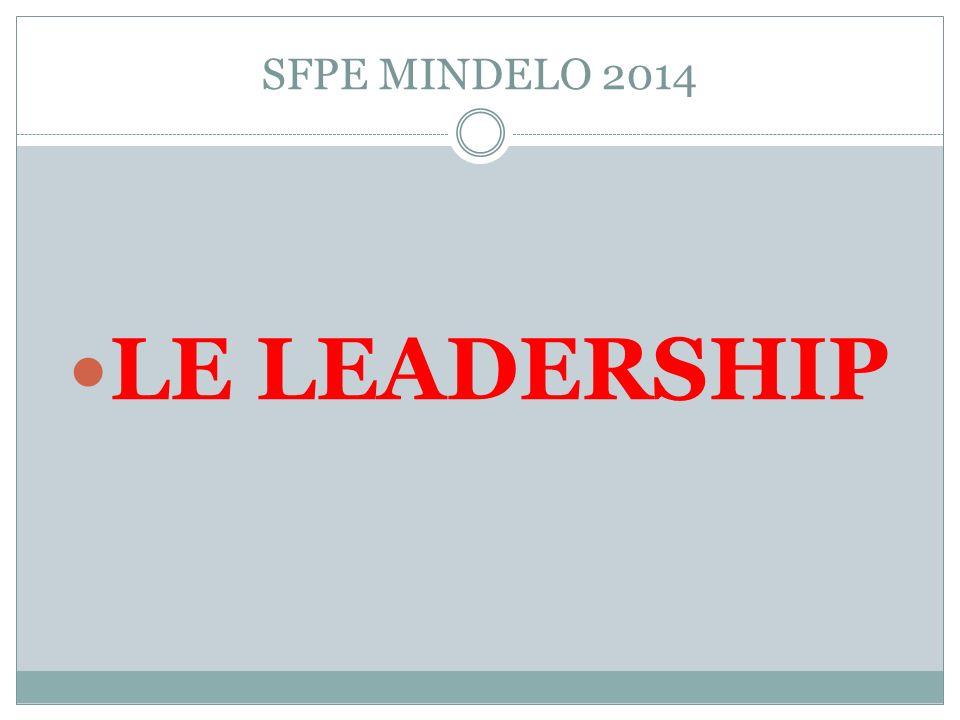 SFPE MINDELO 2014 LE LEADERSHIP