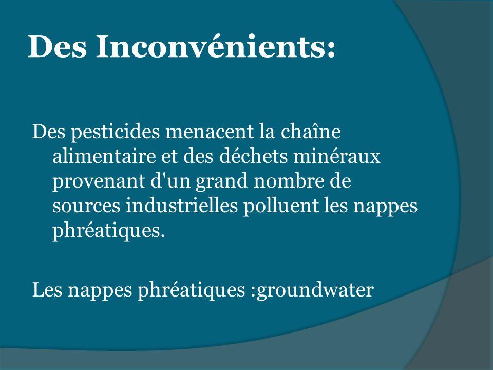 Des pesticides menacent la chaîne alimentaire et des déchets minéraux provenant d'un grand nombre de sources industrielles polluent les nappes phréati