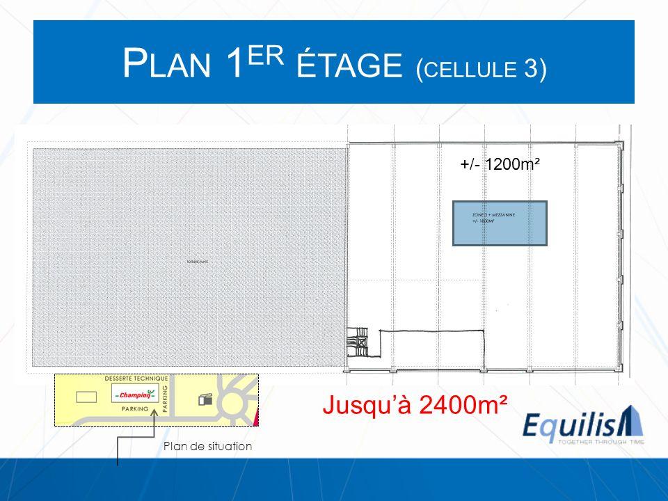 P LAN 1 ER ÉTAGE ( CELLULE 3) +/- 1200m² Plan de situation Jusquà 2400m²