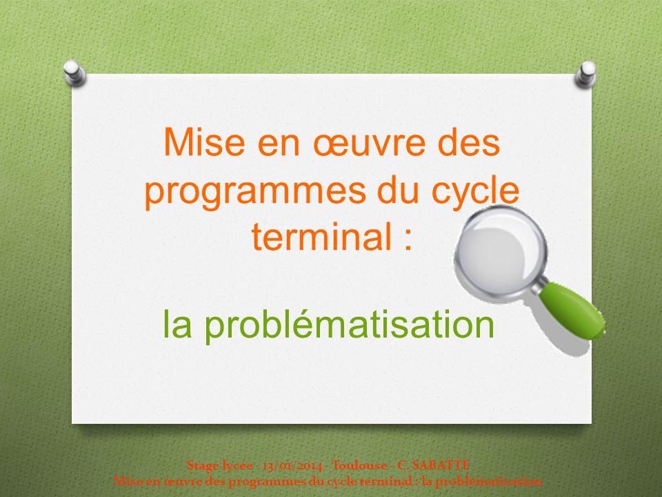 Mise en œuvre des programmes du cycle terminal : la problématisation Stage lycée - 13/01/2014 - Toulouse - C. SABATTE Mise en œuvre des programmes du
