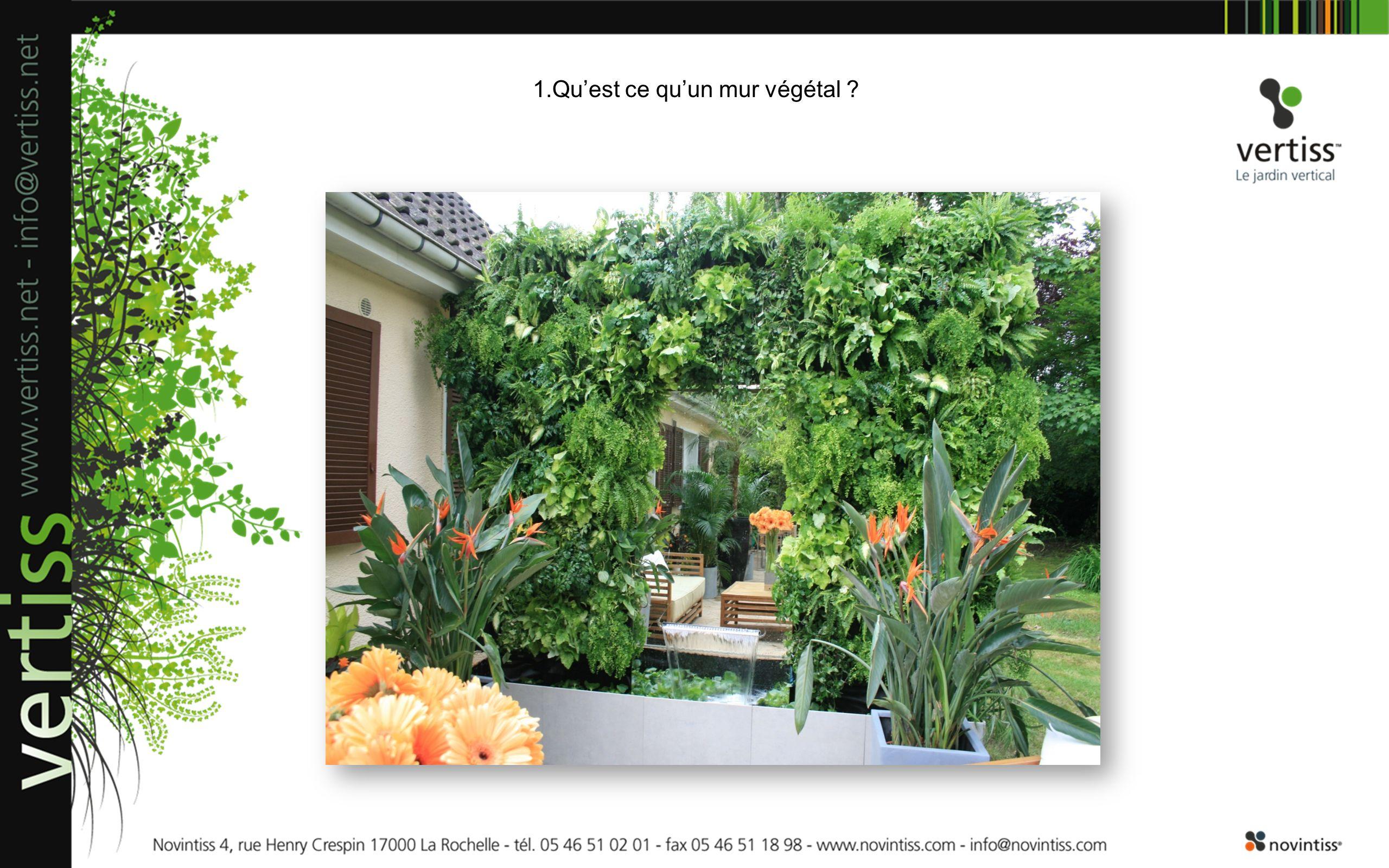 1.Quest ce quun mur végétal ?
