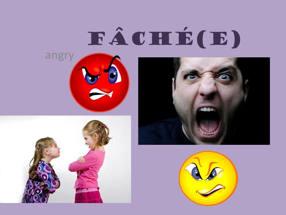 Fâché(e) angry