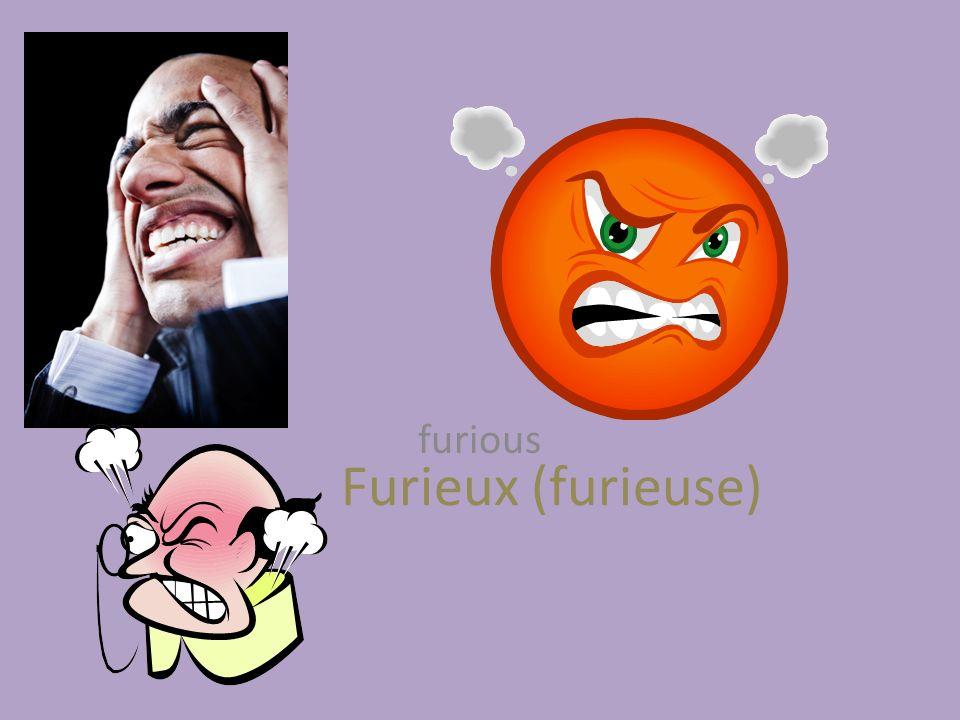 Furieux (furieuse) furious