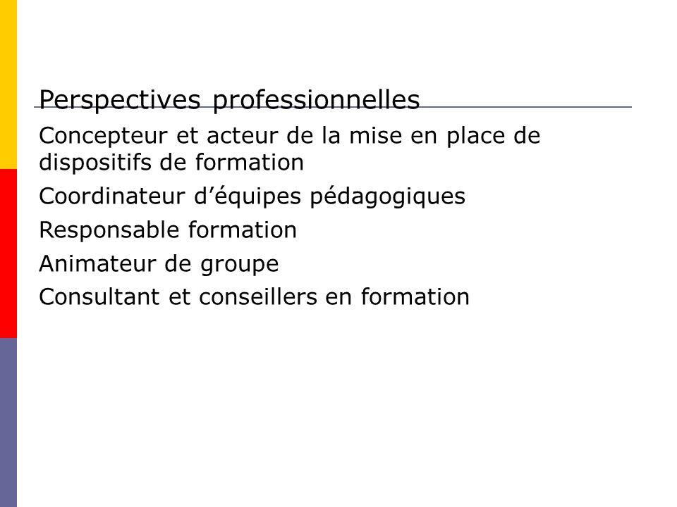 Perspectives professionnelles Concepteur et acteur de la mise en place de dispositifs de formation Coordinateur déquipes pédagogiques Responsable formation Animateur de groupe Consultant et conseillers en formation