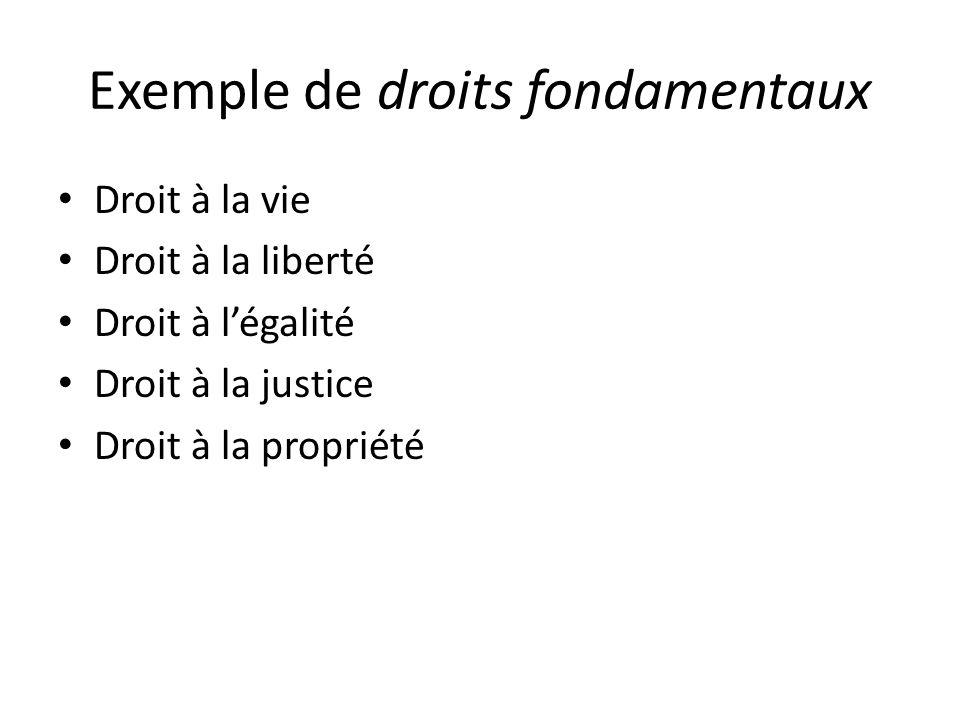 Exemple de droits fondamentaux Droit à la vie Droit à la liberté Droit à légalité Droit à la justice Droit à la propriété