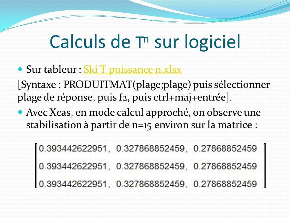 Calculs de T n sur logiciel Sur tableur : Ski T puissance n.xlsxSki T puissance n.xlsx [Syntaxe : PRODUITMAT(plage;plage) puis sélectionner plage de réponse, puis f2, puis ctrl+maj+entrée].