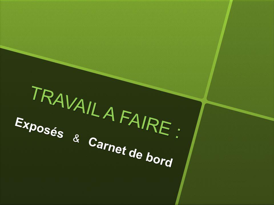 T R A V A I L A F A I R E : Exposés & Carnet de bord
