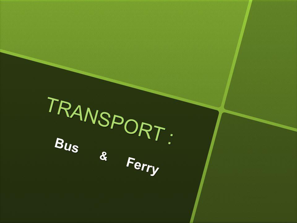 T R A N S P O R T : Bus & Ferry