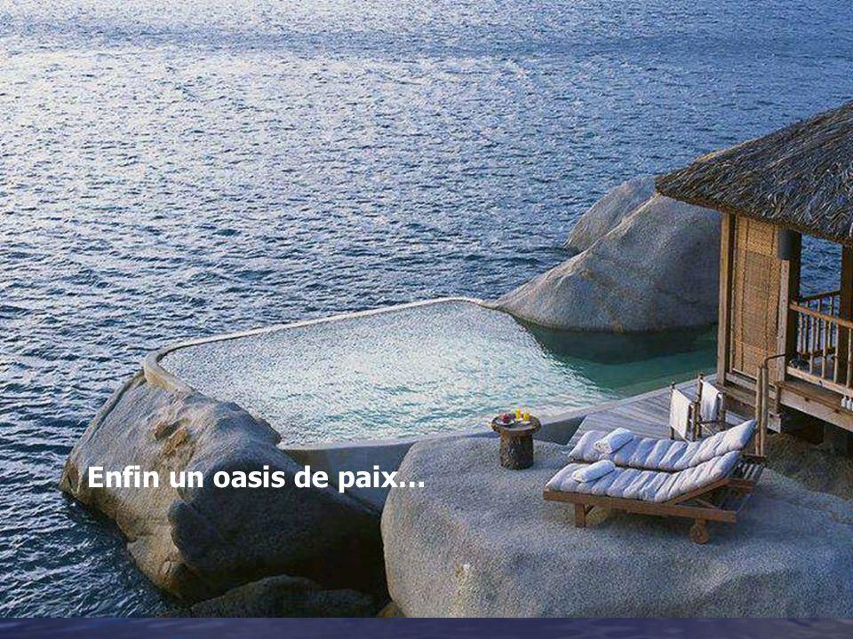 Enfin un oasis de paix…