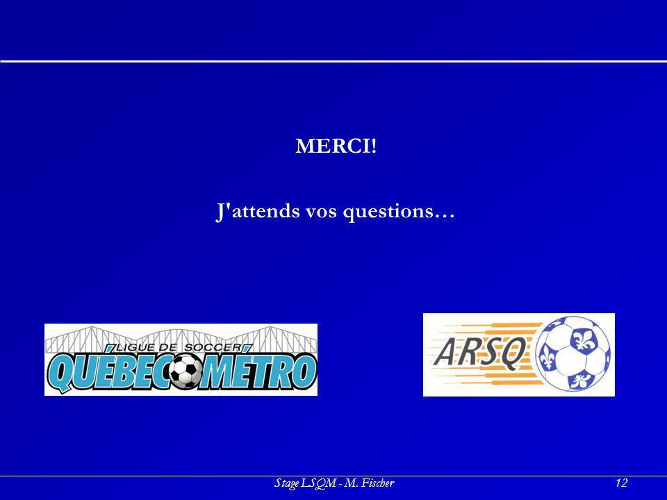 Stage LSQM - M. Fischer12 MERCI! J'attends vos questions…