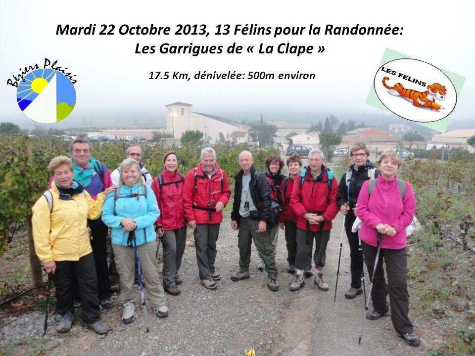 Mardi 22 Octobre 2013, 13 Félins pour la Randonnée: Les Garrigues de « La Clape » 17.5 Km, dénivelée: 500m environ