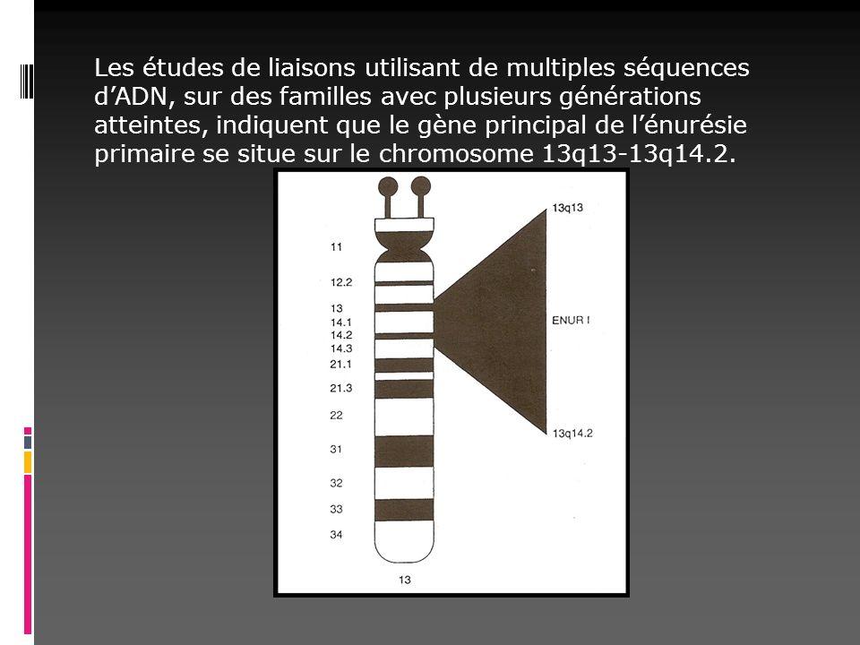 Les études de liaisons utilisant de multiples séquences dADN, sur des familles avec plusieurs générations atteintes, indiquent que le gène principal d