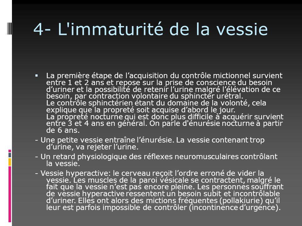 4- L'immaturité de la vessie La première étape de lacquisition du contrôle mictionnel survient entre 1 et 2 ans et repose sur la prise de conscience d
