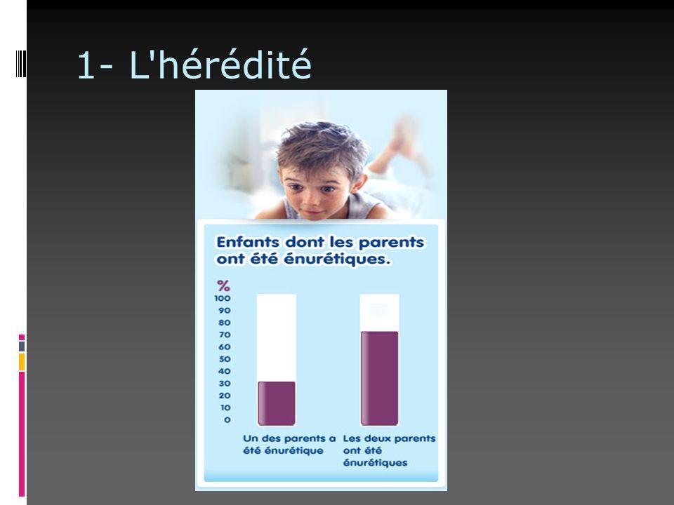 1- L'hérédité