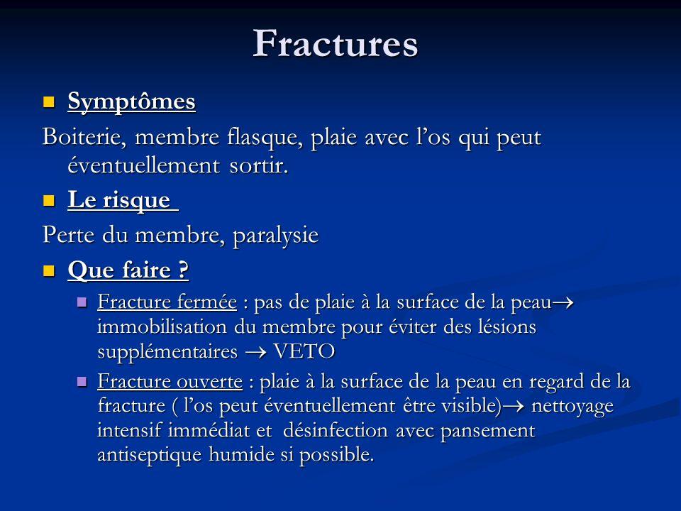 Fractures Symptômes Symptômes Boiterie, membre flasque, plaie avec los qui peut éventuellement sortir. Le risque Le risque Perte du membre, paralysie