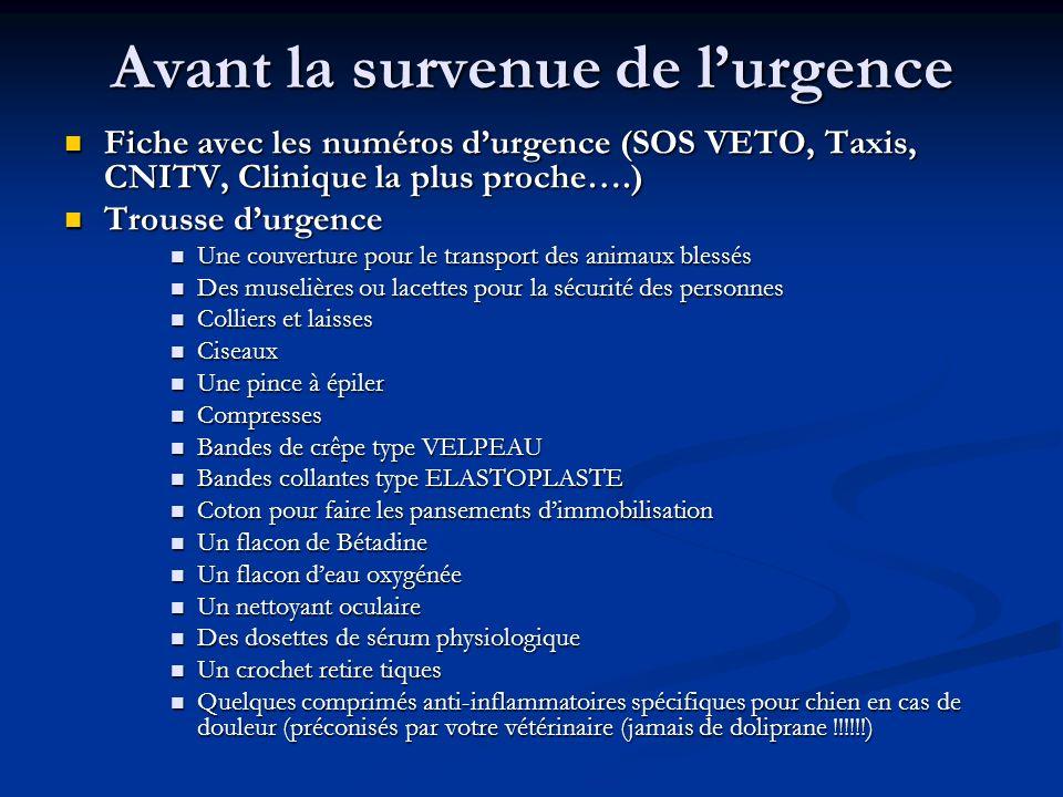 Avant la survenue de lurgence Fiche avec les numéros durgence (SOS VETO, Taxis, CNITV, Clinique la plus proche….) Fiche avec les numéros durgence (SOS