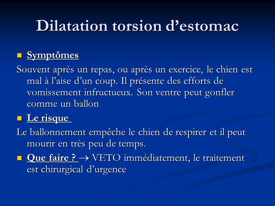 Dilatation torsion destomac Symptômes Symptômes Souvent après un repas, ou après un exercice, le chien est mal à laise dun coup. Il présente des effor