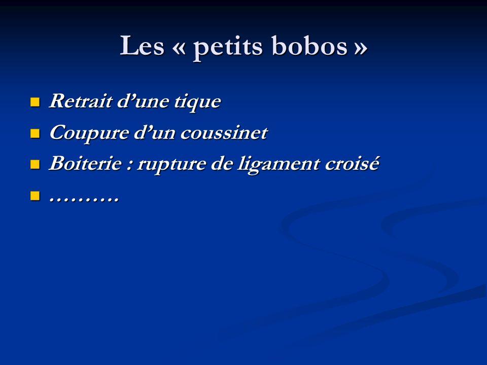 Les « petits bobos » Retrait dune tique Retrait dune tique Coupure dun coussinet Coupure dun coussinet Boiterie : rupture de ligament croisé Boiterie