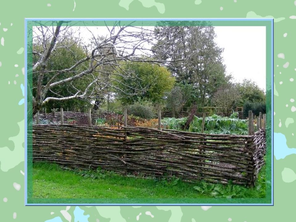 A larrière de lhabitation, était organisé le jardin, domaine de la femme du fermier. Elle définissait, tout à fait intuitivement, une rotation annuell