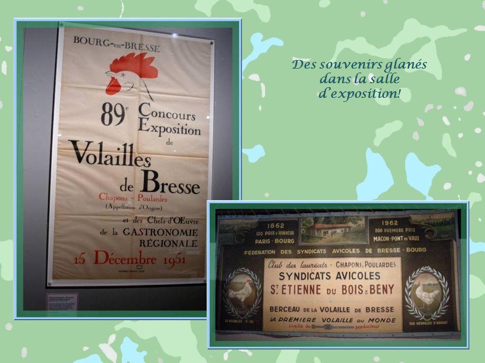 La volaille de Bresse est reconnue pour sa qualité : elle est exportée dans le monde entier… En fait, la poularde de Bresse se caractérise par des pat