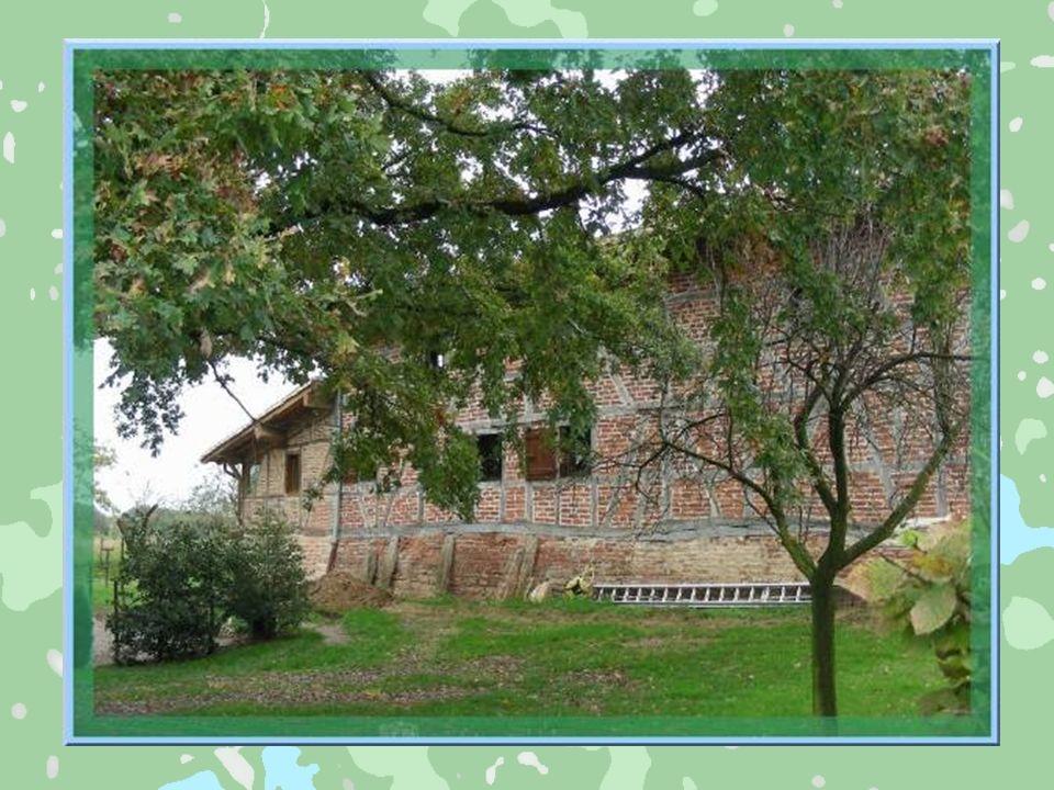Dans ce hameau de Saint-Cyr-sur-Menthon, la brique est utilisée entre les pans de bois.