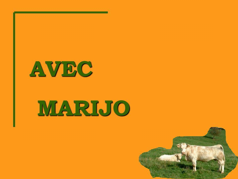 AVEC MARIJO MARIJO