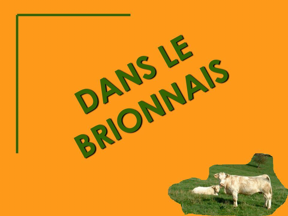 DANS LE BRIONNAIS