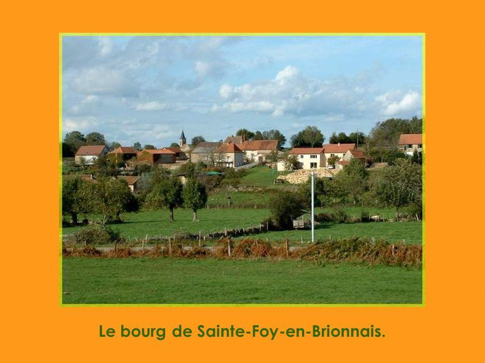 Au fond, les monts du Beaujolais.