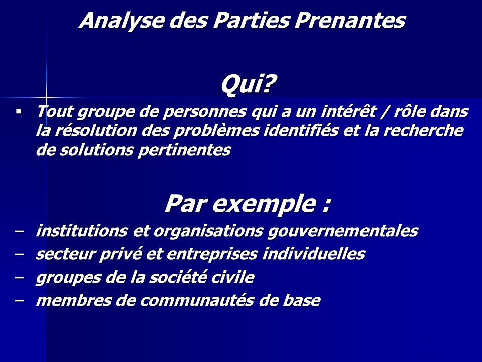slide 13 Analyse des Parties Prenantes Qui? Tout groupe de personnes qui a un intérêt / rôle dans la résolution des problèmes identifiés et la recherc