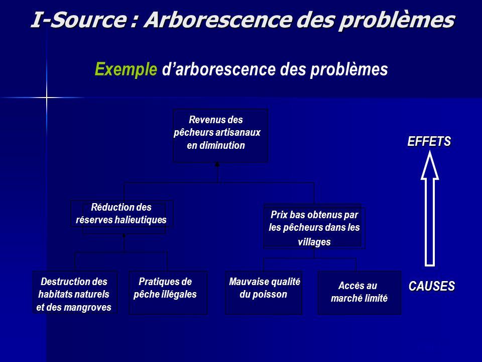 slide 17 I-Source : Arborescence des problèmes EFFETS CAUSES Exemple darborescence des problèmes Réduction des réserves halieutiques Prix bas obtenus