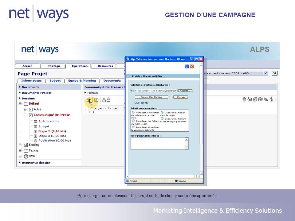Marketing Intelligence & Efficiency Solutions Pour charger un ou plusieurs fichiers, il suffit de cliquer sur licône appropriée.