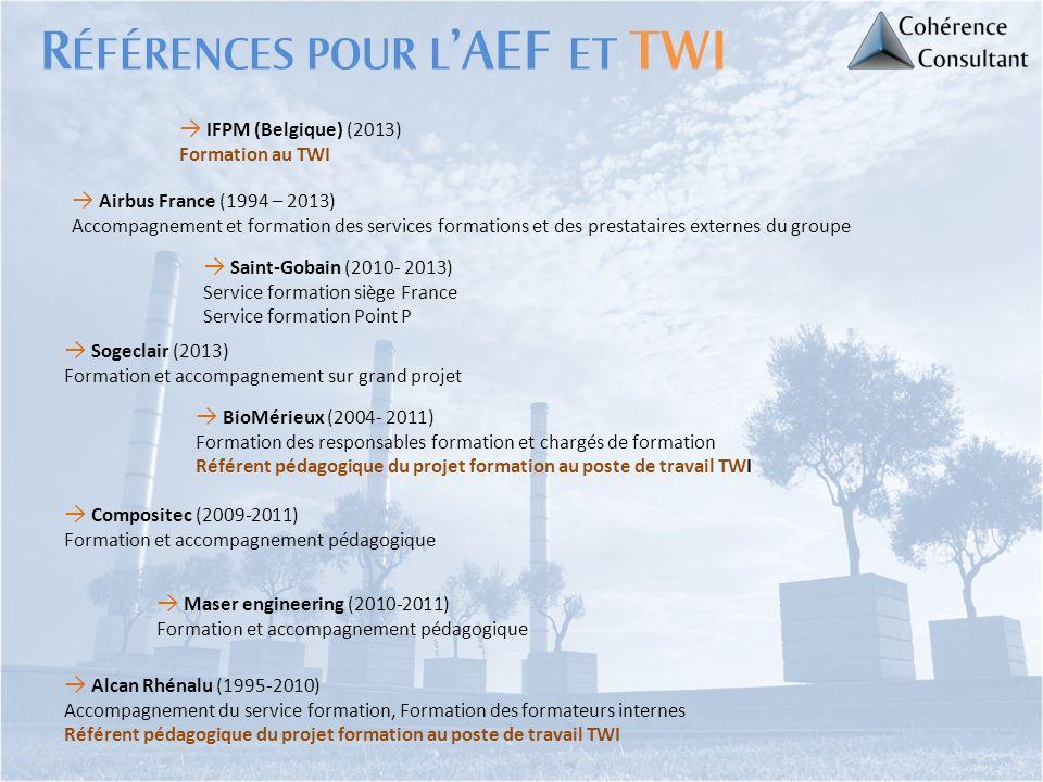 Alcan Rhénalu (1995-2010) Accompagnement du service formation, Formation des formateurs internes Référent pédagogique du projet formation au poste de