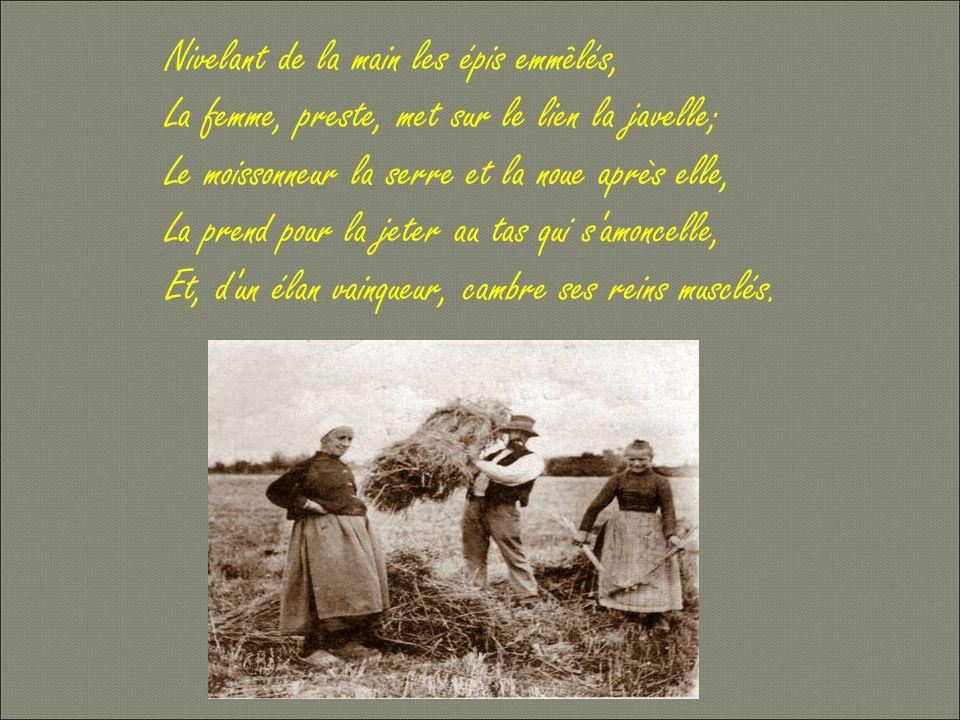 jrfournier61@ yahoo.fr Montage: Jean-Rémy Fournier N°8