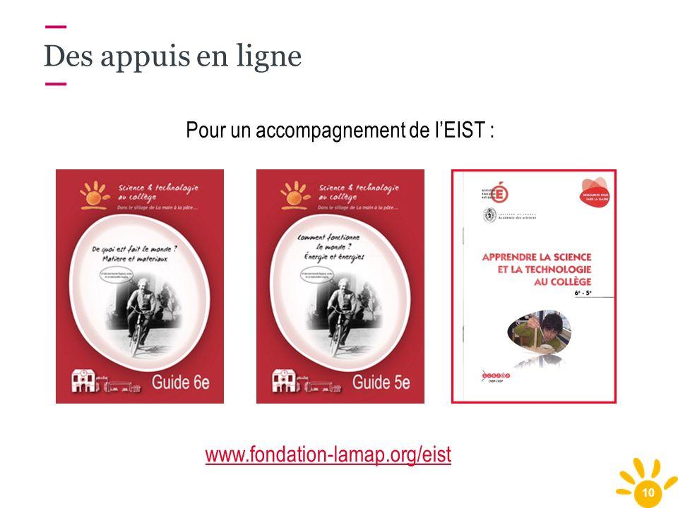 10 Pour un accompagnement de lEIST : Des appuis en ligne www.fondation-lamap.org/eist