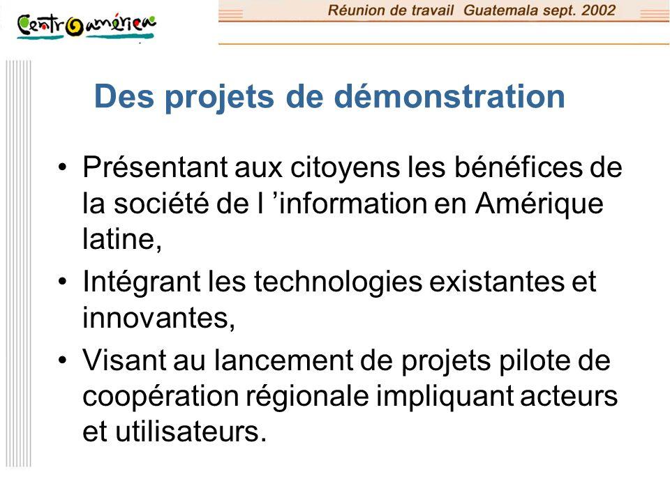 Les 4 domaines thématiques d ALIS Gouvernance locale Education et diversité culturelle Santé publique Insertion sociale (ou e-inclusion)