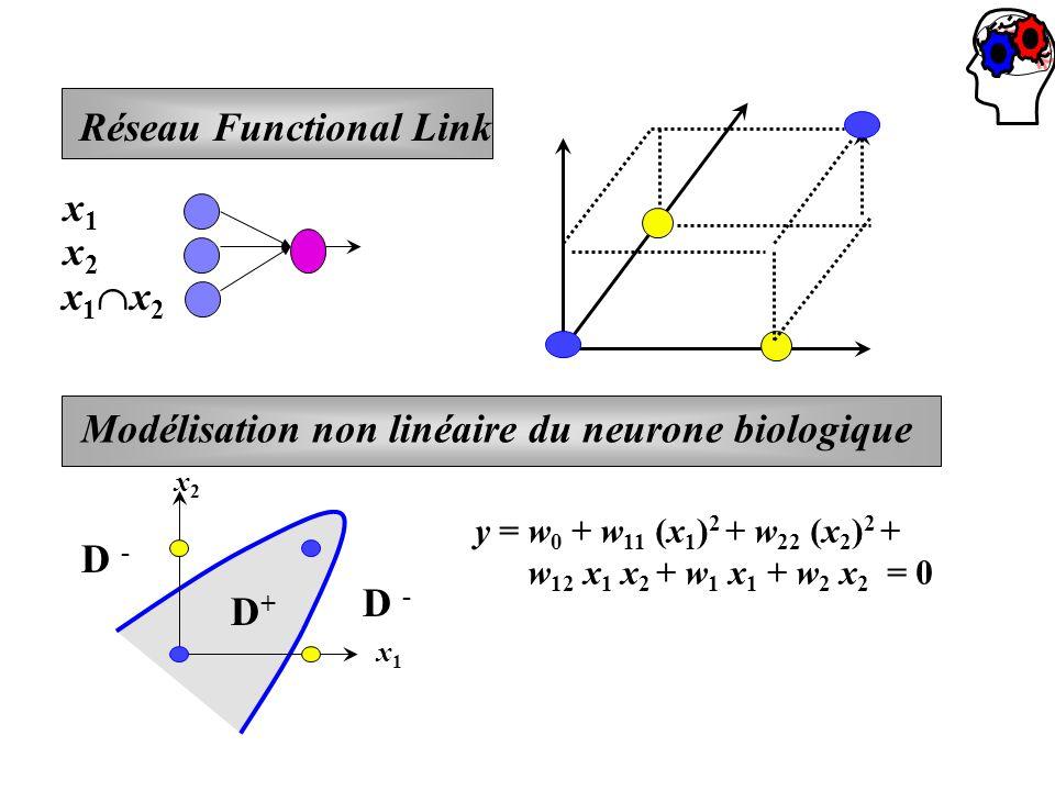 x 1 x 2 Réseau Functional Link x1x1 x2x2 Modélisation non linéaire du neurone biologique x2x2 x1x1 D+D+ D - y = w 0 + w 11 (x 1 ) 2 + w 22 (x 2 ) 2 +