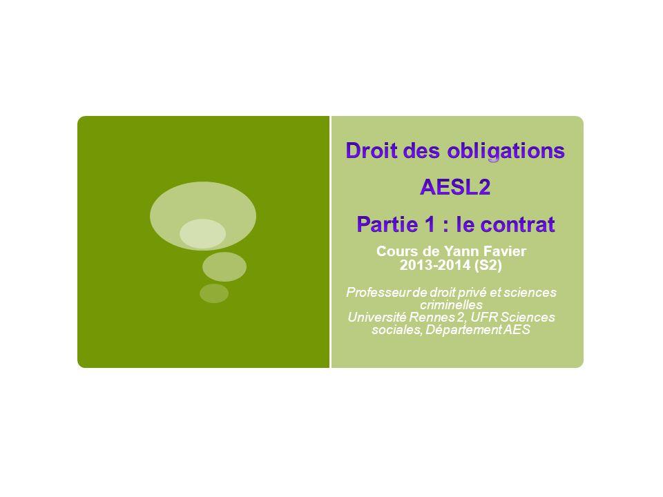 Cours de Yann Favier 2013-2014 (S2) Professeur de droit privé et sciences criminelles Université Rennes 2, UFR Sciences sociales, Département AES