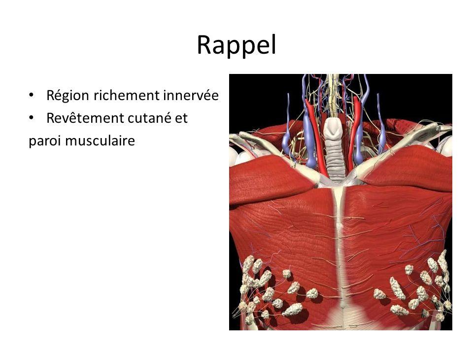 Douleurs « non urgentes » Contusions musculaires Fracture costale unique Chondrite costale Zona Douleurs neurotoniques (anxiété) = douleurs pariétales