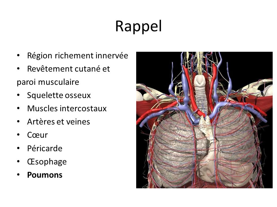 Angioscanner réalisé en urgence Dissection aortique de laorte ascendante de la crosse aortique de type II de Bakey, se prolongeant dans le tronc artériel brachio-céphalique Aorte Asc: 51 mm Aorte Desc: 35 mm Aorte abdo sans anomalie