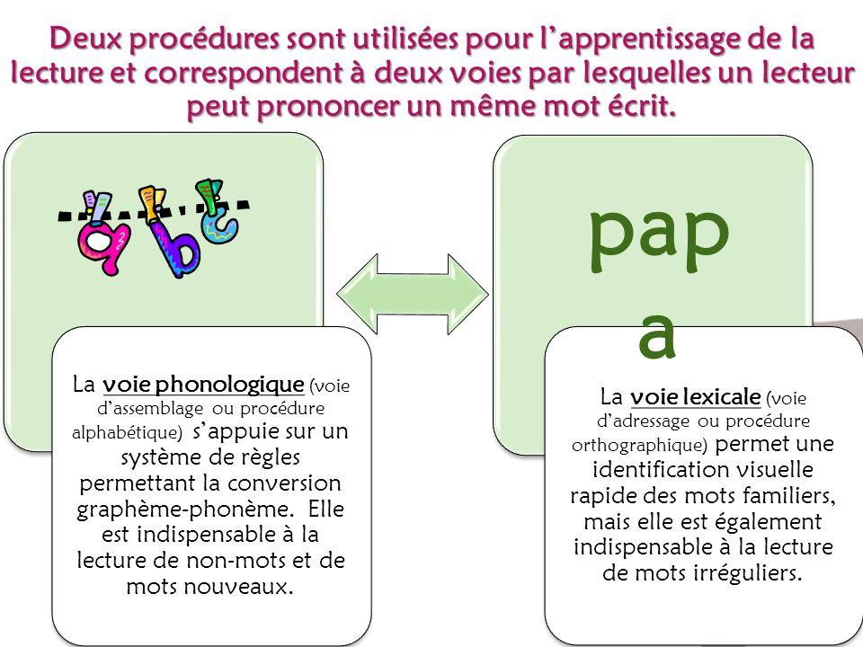 Deux procédures sont utilisées pour lapprentissage de la lecture et correspondent à deux voies par lesquelles un lecteur peut prononcer un même mot éc