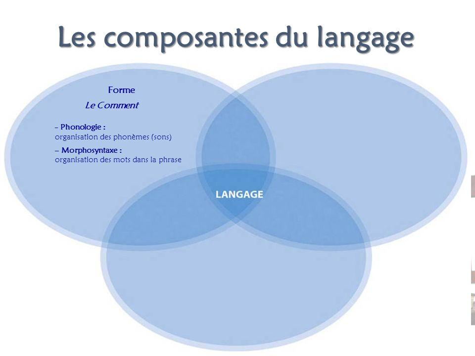 Les composantes du langage Forme Le Comment – Phonologie : organisation des phonèmes (sons) – Morphosyntaxe : organisation des mots dans la phrase
