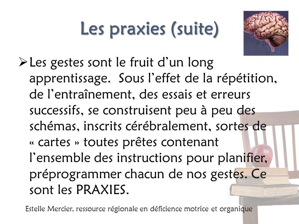 Les praxies (suite) Les gestes sont le fruit dun long apprentissage. Sous leffet de la répétition, de lentraînement, des essais et erreurs successifs,